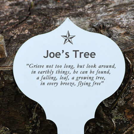 Personalised Engraved Gift or Memorial Tree Plaques