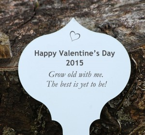 Valentines-tree-plaque